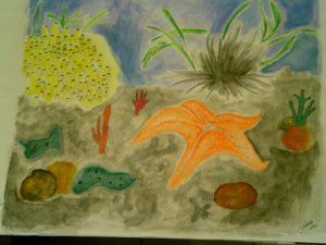 Aquarelas fundo do mar