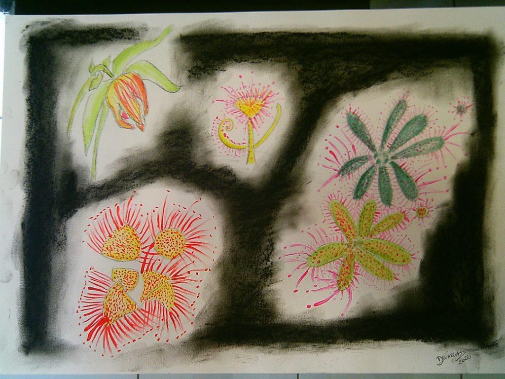 flores carnívoras 2