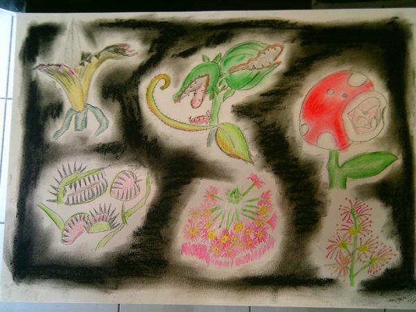Flores-carnívoras 3